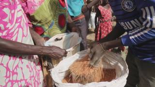#FacingFamine - What causes a Famine?