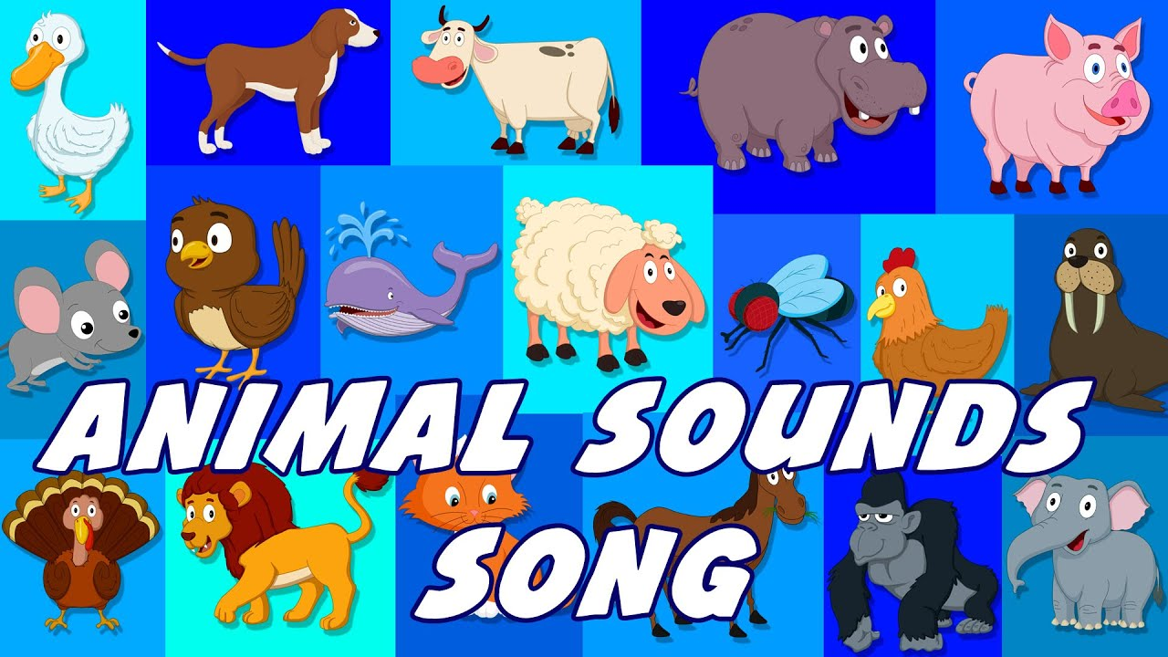 sounds animal animals song nursery rhymes