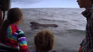 Cape Breton Island - Coastal Adventure