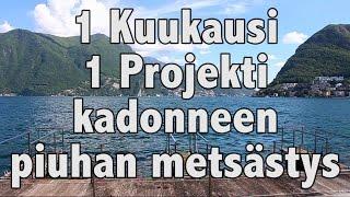 1 Kuukausi 1 Projekti - Kadonneen Piuhan Metsästys (Päivät 10 ja 11)