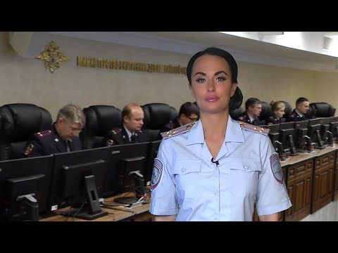В Забайкальском крае задержан лесничий по подозрению в организации незаконной рубки деревьев