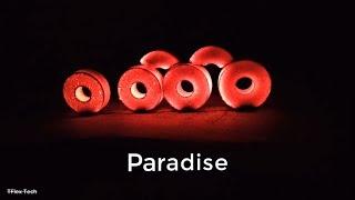 PARADISE - Downfall [Lyrics]