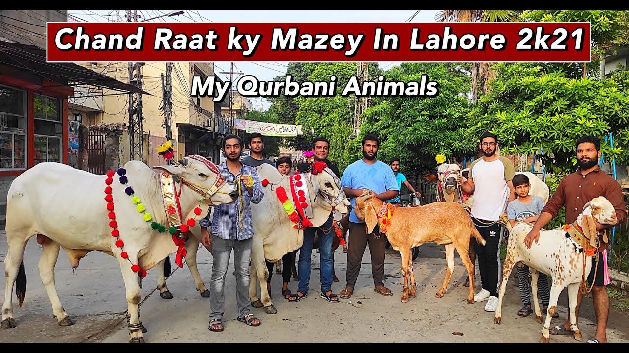 Bakra Eid Ki Chand Rat K Mazey in Lahore 2021| MY Qurbani Animals Bakra Eid 2021| Cattle Of Pakistan
