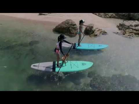 Pups on SUPS - How To Paddle Board With Your Dog