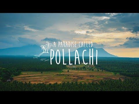A Paradise Called Pollachi