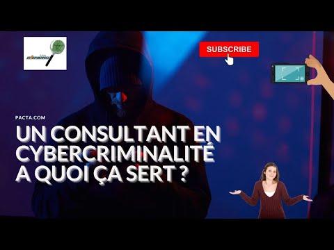 Quelle est la mission du consultant en cybercriminalité dans les litiges numériques ?