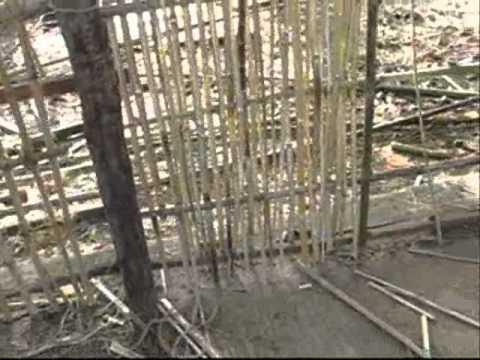 Wattle And Daub Insulation Split Bamboo Wattle Amp Daub
