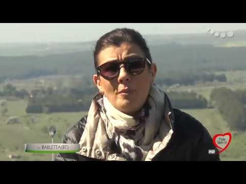 UN POSTO A TAVOLA  in collegamento con Nicola Curci, giornalista
