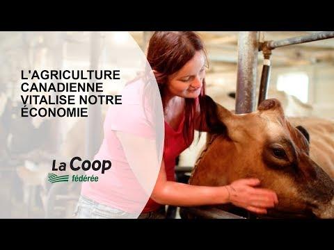 L'agriculture canadienne vitalise notre économie