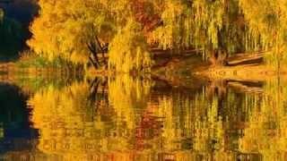 Download Уходящая осень... Mp3 and Videos