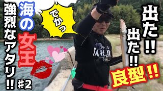 広島県大崎上島釣行2日目。 2日目の午前中キス釣りに挑戦してきました。...