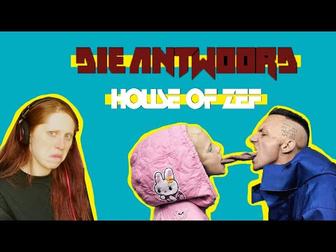 NEW MUSIC // DIE ANTWOORD // REACTION // HOUSE OF ZEF MEGAMIX