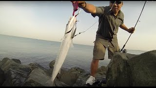 Shimano Vengeance SVAX24 Shad | Spinning Rod | Field Test
