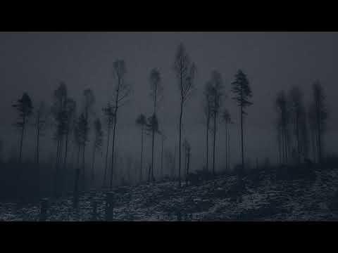 A Swarm of the Sun - The Woods - An Heir to the Throne Mp3