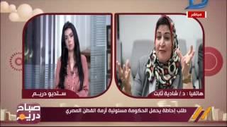 صباح دريم| برلمانية تتقدم بطلب إحاطة يحمل الحكومة مسئولية أزمة القطن المصري