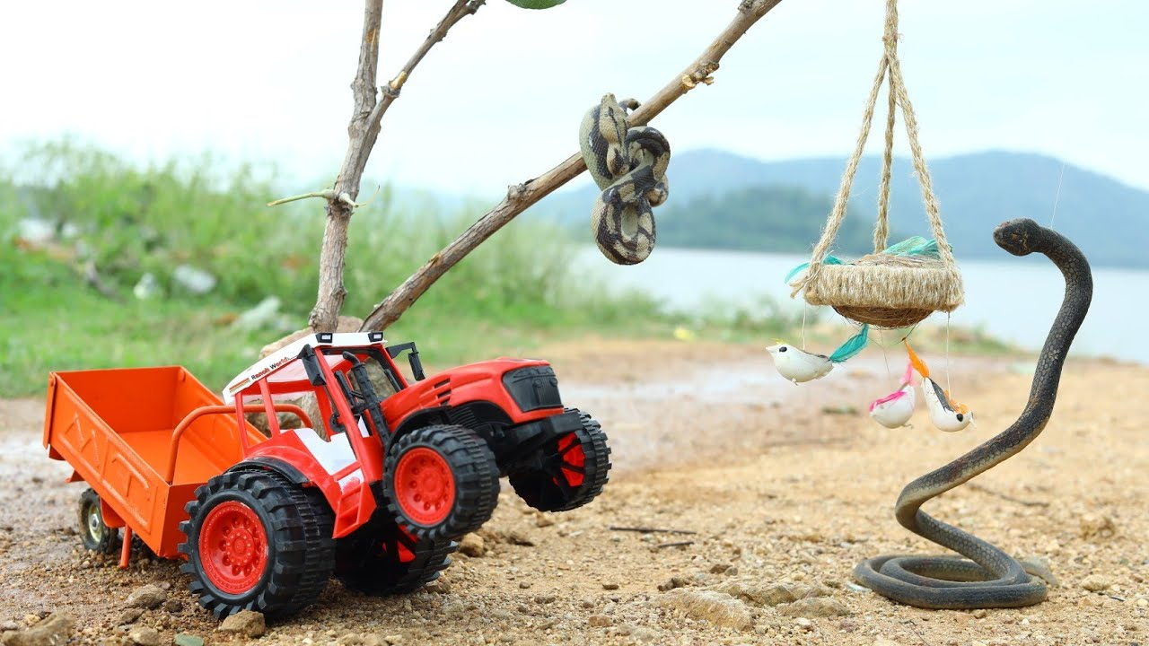 King Cobra And Rattle Snake Attack Birds Help By JCB | CS Toy