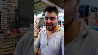 El gangui Tucumán