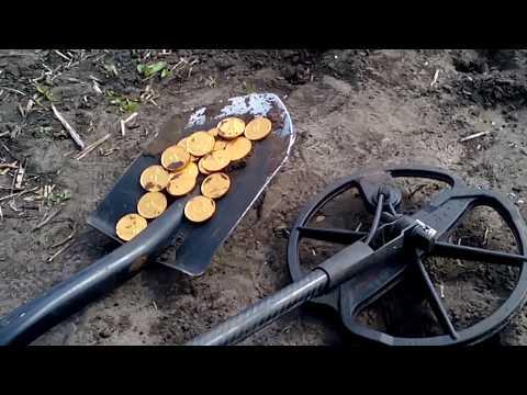 Видео как ищут монеты металлоискателем