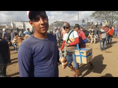 Feira do Gado de Cachoeirinha PE dia 16/01/2020 primeira vez na feira do Gado de Cachoeirinha