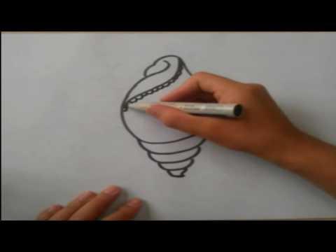 Как нарисовать морскую раковину