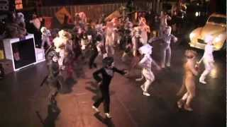 Skimbleshanks: The Railway Cat (Landers Theatre)