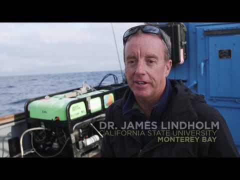 Fishing Gear Innovations Drive Amazing Results