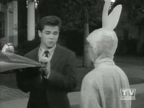 Leave It To Beaver   S05E16   Beaver the Bunny