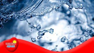 Liquido - Más grados 6-8 Ciencia en el Canal de Videos de Aprendizaje Video