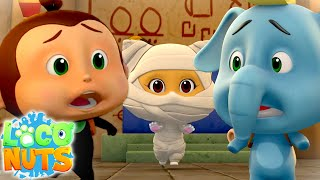 Cartoon Show For Kids | Fun Videos For Babies with Loco Nuts
