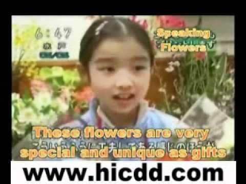 Qingdao unique flower printer