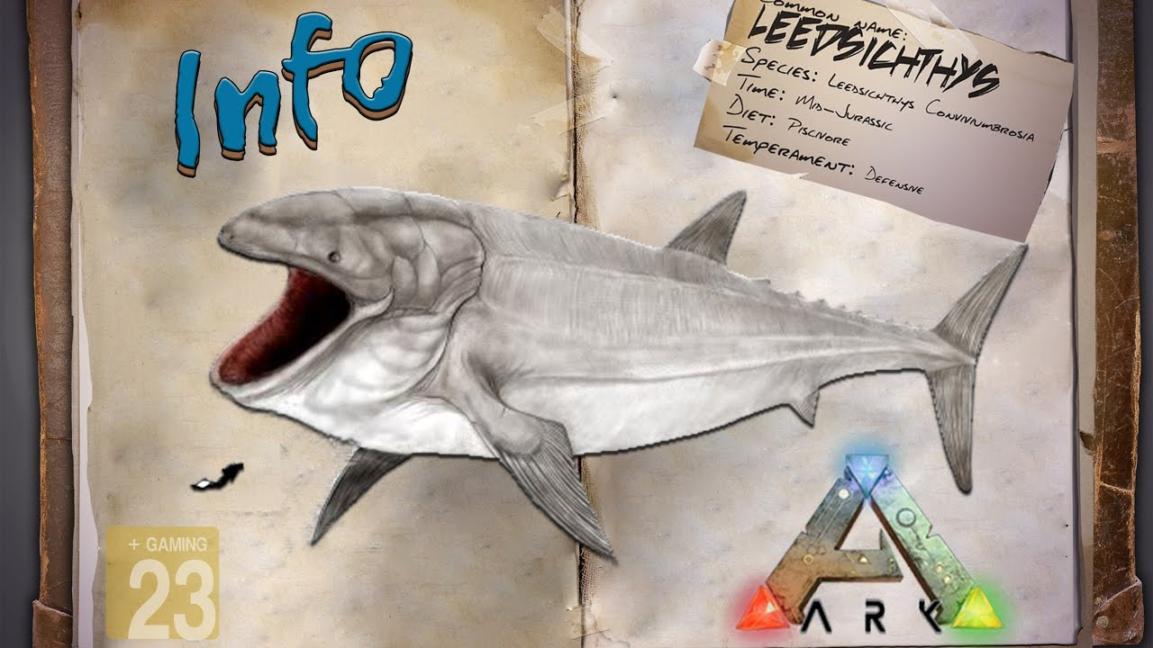 Raft Shark Defense