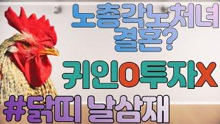 닭띠 2021년 날삼재 대박!!!!!!