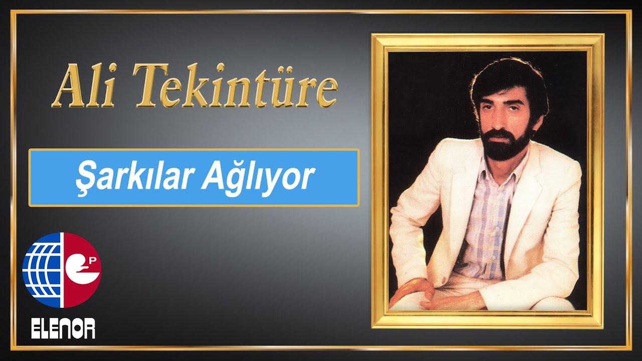 ALİ TEKİNTÜRE feat ADNAN TAYFUN - ÖLESİM GELDİ