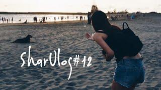 SharVlog#12💘第一次蜜蠟修眉 | Sharpaygaga