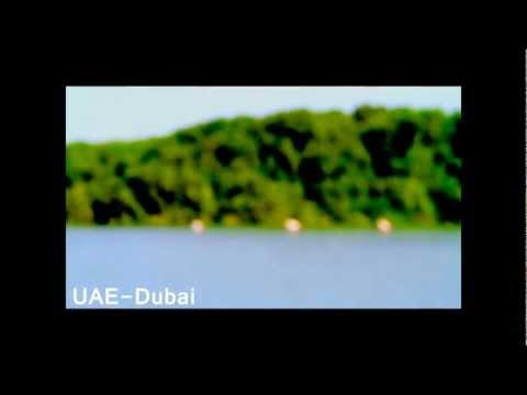 UAE-Dubai Wildlife Sanctuary- Flamingo HD