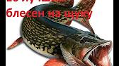 Компания ecogroup официальный поставщик rublex в россии. Большой ассортимент. Rublex — легендарная французская марка. Rublex orkla.