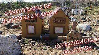 Cementerios de Mascotas - Investigación Iracunda