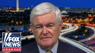 Gingrich: Bernie Sanders is the true Democratic Party