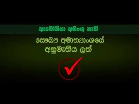 Tabrane Hair Care Original Shampoo -  Approved  by Health Ministry Sri Lanka