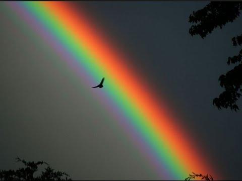 """Résultat de recherche d'images pour """"belle image arc en ciel"""""""