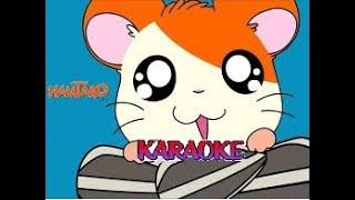 Hamtaro - Karaoke  (piccoli criceti grandi avventure)