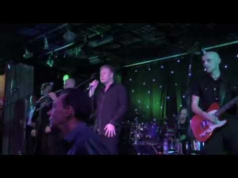 Rats In The Kitchen, UB40 Tribute Show