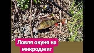 Ловля окуня на канале Днепр Донбасс 2018