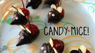 Yummy Diy- Candy Mice!