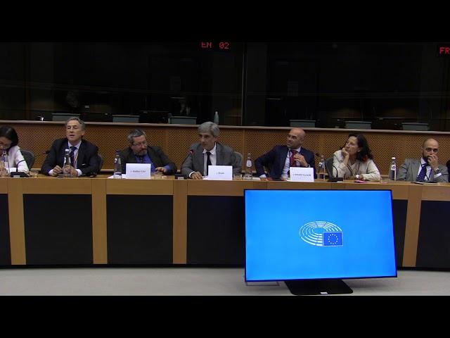 Iván Vélez: Parlamento Europeo 11 de septiembre de 2019 (extracto)
