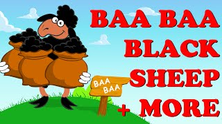 Baa Baa Black Sheep | Wheels On The Bus | Pat A Cake | Plus More | Nursery Rhyme