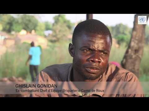 PRE DDR en République Centrafricaine