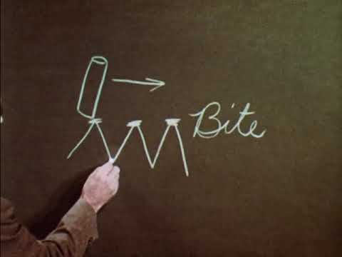 Chalk And Chalkboards (1959)