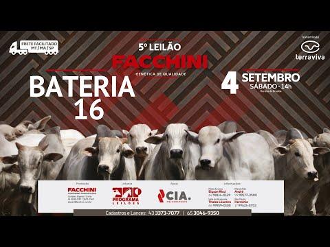 BATERIA 16 - 5º LEILÃO FACCHINI 04/09/2021