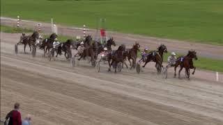 Vidéo de la course PMU PRIX VREUGDENHIL - DAIRY FOODS